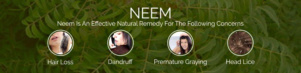 NEEM-banner
