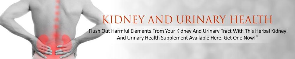 KIDNEY-AND-URINARY-HEALTH