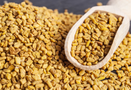 Fenugreek supplements health products health supplements