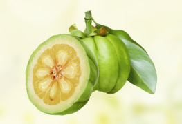 Garcinia Cambogia supplements health products health supplements