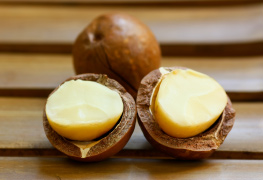 Macadamia nut hair care products