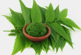 neem skin care products beauty products