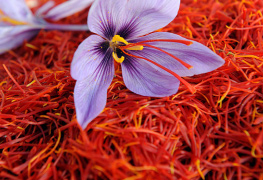 saffron skin care products beauty products